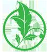 greenlogo-icon